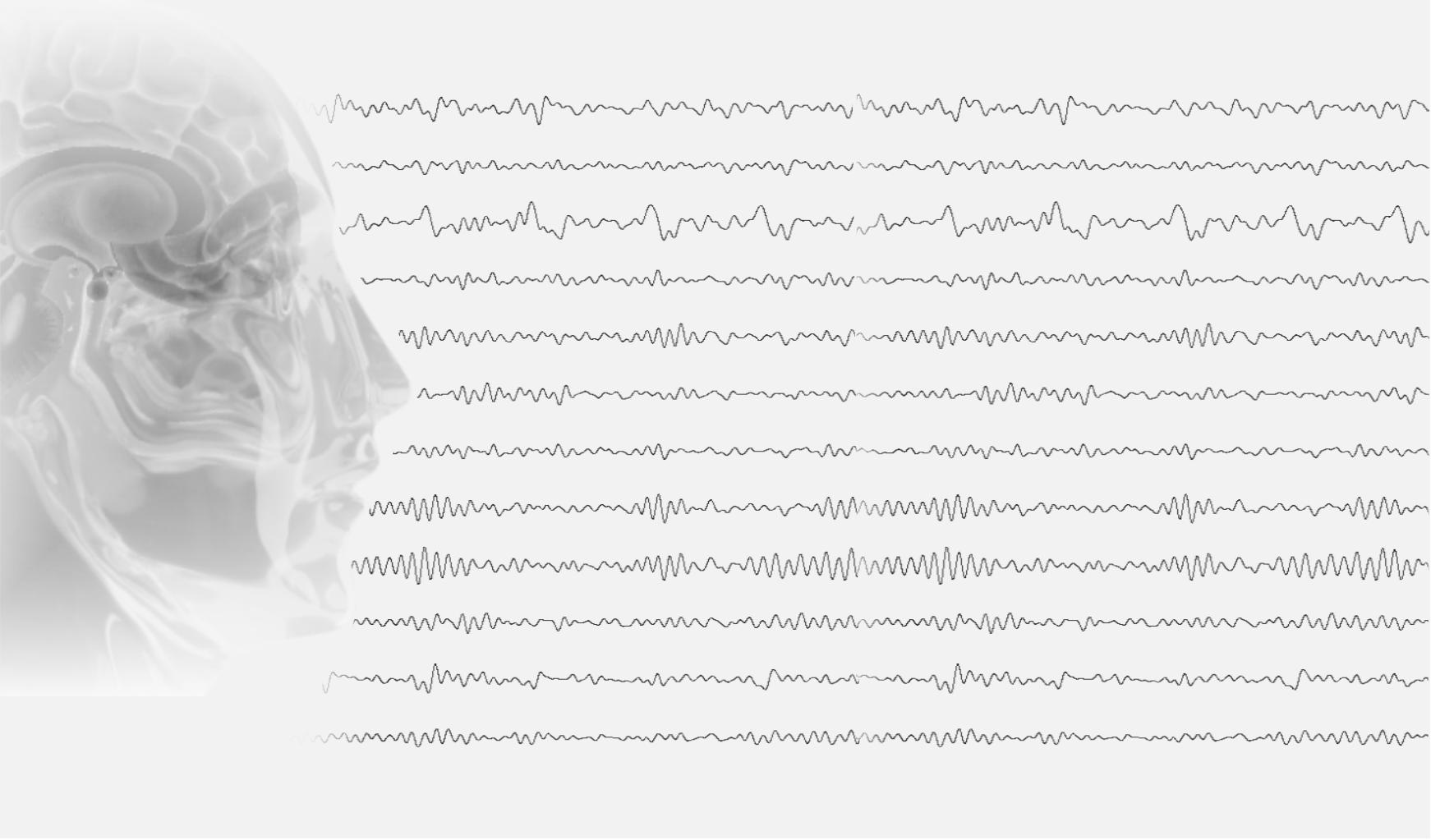 Комплектующие к ЭЭГ Braintest